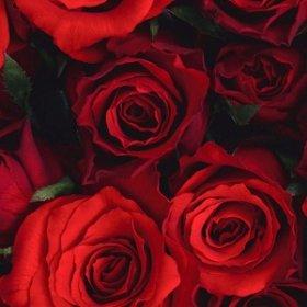 Главное правило при заказе роз